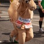 marathon-208