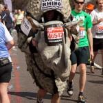 marathon-240